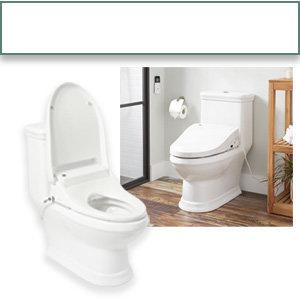 Incredible Bathroom Bidet Buying Guide Forskolin Free Trial Chair Design Images Forskolin Free Trialorg