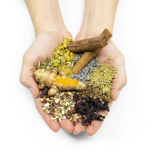 Franchising   The Spice & Tea Exchange
